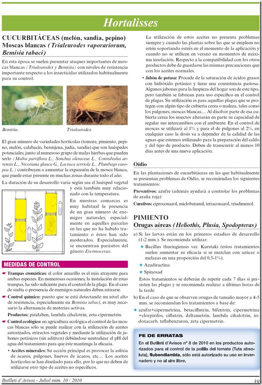Boletín nº10 julio 2010